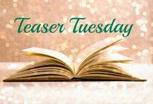 Teaser Tuesday #4!!