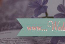 W W W… Wednesday #26 !