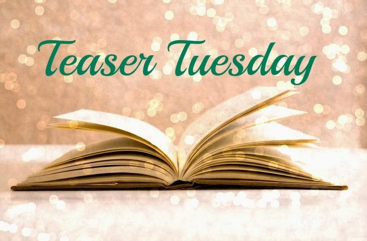 Teaser Tuesday #12!