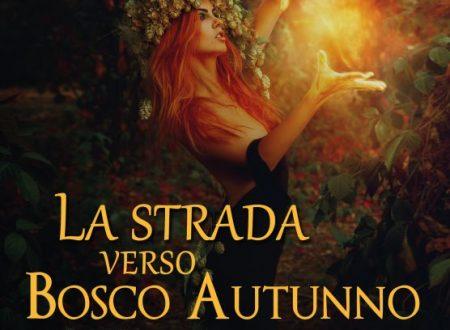 La strada verso Bosco Autunno di Paolo Fumagalli!
